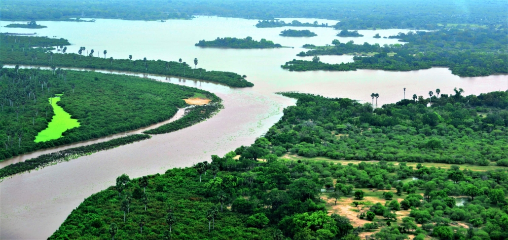Selous Game Reserve landscape Rufiji River