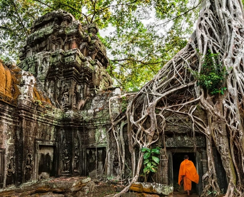 Buddhist Monk, Angkor Wat - Siem Reap, Cambodia
