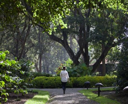 ©Elewana Arusha Coffee Lodge - Leafy Gardens (c)Silverless