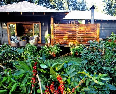 ©Elewana Arusha Coffee Lodge - Plantation Suite Exterior