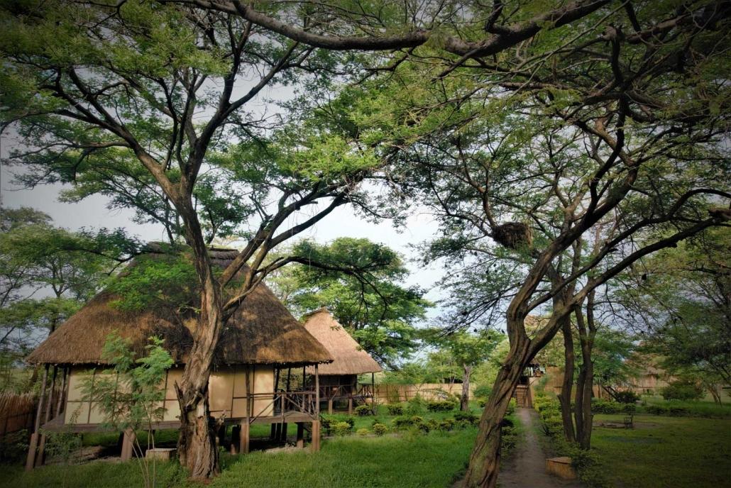 Little Okavango